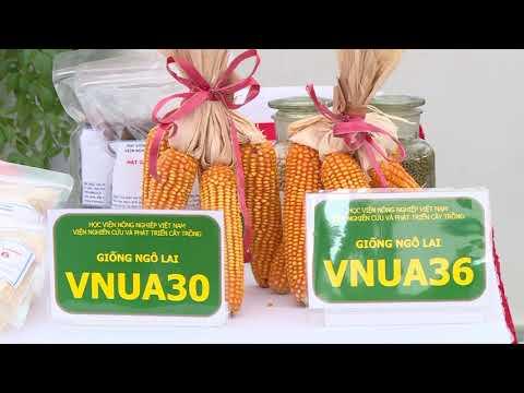 Đẩy mạnh phát triển nông nghiệp số | VNUA (Không logo)