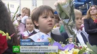 Первые лица России удивили школьников кошкой и загадками. Путин. Кошка вид сзади.
