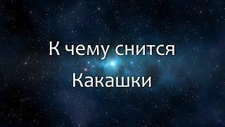 К чему снится Какашки (Сонник, Толкование снов)