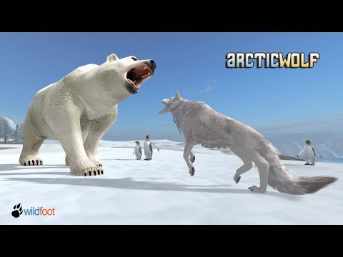 Arctic Wolf Simulator  - By  Wild Foot Games - Adventure - Google PlaySuper  Quality
