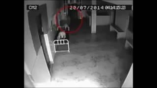 पटना के अस्पताल में दिखा भूत, सोशल मीडिया में वायरल हुआ वीडियो!