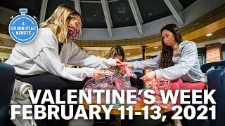 What Happened at Quinnipiac University Last Week? | February 7-13, 2021