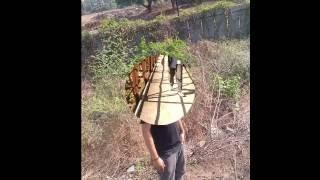 dehradun wala hu by rohit dhaundiyal