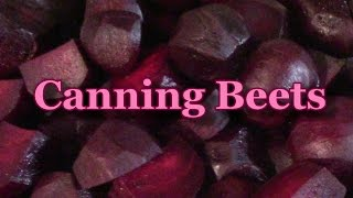 Canning Beets For The Pantry
