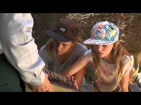 New South Wales National Parks (Insider Tips from Local Kids)