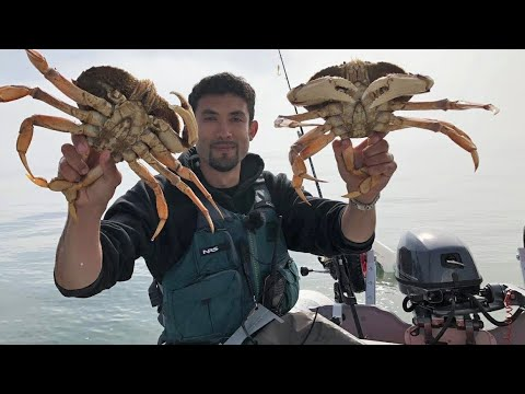 Catching MONSTROUS Dungeness Crabs at Sea!