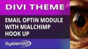 Divi Theme Email Optin Module With Mailchimp Hook Up