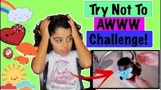 Try not to AWW challenge / Watching some of the Kids React FBE videos and more!