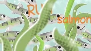 Bobs & Lolo - Run Salmon Run (Official Video)