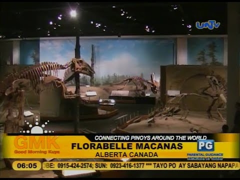 Royal Tyrrell Museum exhibits 130,000 dinosaur fossils