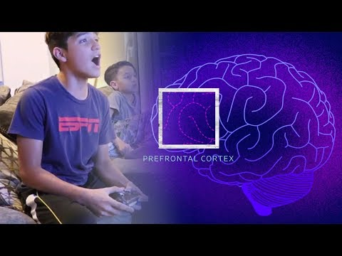 This Is Your Child's Brain On Videogames | WSJ
