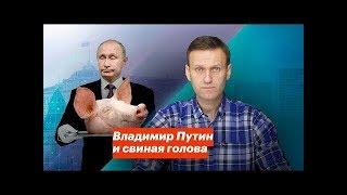 Путин и свиная голова