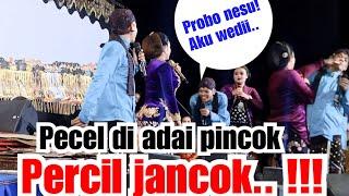 Download lagu Percil modiar di ajar lusi brahman karo proborini|| 13 juli 2019 ki eko prisdianto live ponorogo