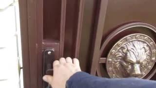 видео Входная дверь с декоративными накладными элементами, в ассортименте