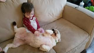 Baby and dog best friends