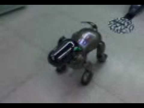 AIBO dancing Michael Jacks sg  IUCTC