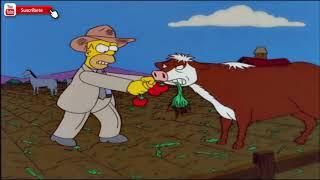 Los animales se comen el tomaco de homero | Los Simpson. Español latino