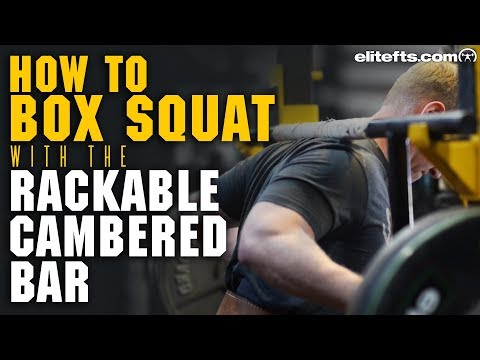 How To Box Squat With The Rackable Cambered Bar | Elitefts.com