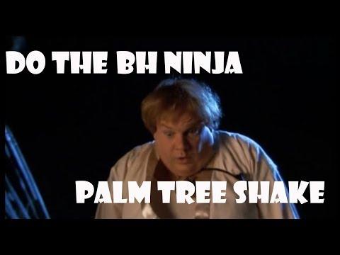 Do The BH Ninja Palm Tree Shake