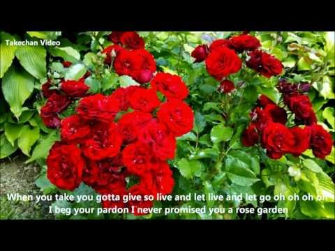 Rose Garden [Lyrics]  Lynn Anderson
