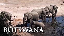 Botswana: Highlights in Afrika - Reisebericht