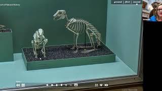 PALS TV   Smithsonian Virtual Visit 3