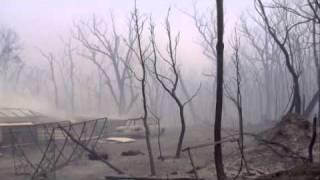 aaf-inside.the.firestorm.2010.dvdrip.xvid-sample