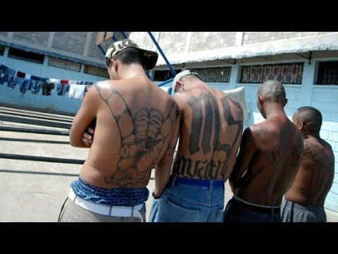 MS-13: America's most dangerous street gang?