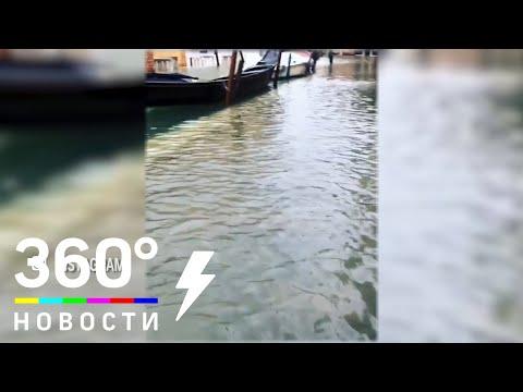 Венеция идёт на