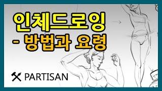인체드로잉 강좌 - 인체드로잉(크로키) 방법 - How To Draw Human Drawing