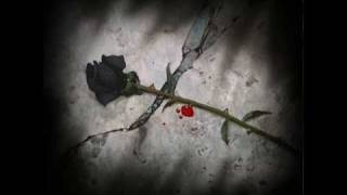 Marc Terenzi - Black Roses