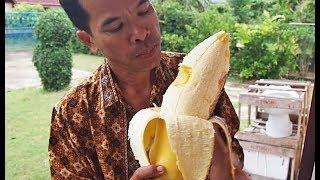 13 Cosas raras que solo podrás ver en Tailandia