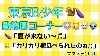 サマステ 東京B少年 動物園コーナー