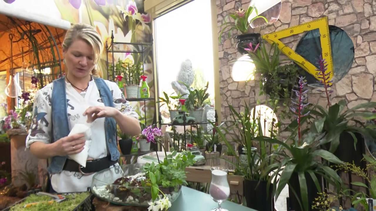 Keramikscheune Orchideen Dekorieren
