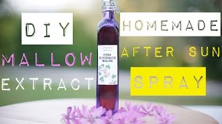 Homemade After Sun Soothing Spray - Mallow Extract - part 1 Thumbnail