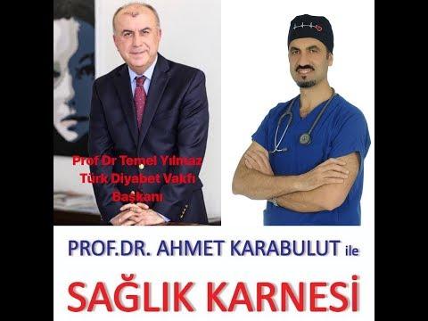 TÜRKİYE'DE DİYABET HASTASI SAYISI 10 MİLYONU GEÇTİ - PROF DR TEMEL YILMAZ - PROF DR AHMET KARABULUT