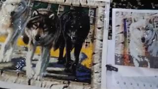 Волки две одинаковые картины от разных продавцов алмаазная живопись