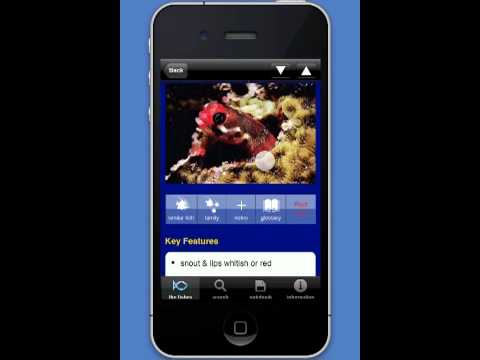 Fish ID Guide App. Free on iTunes
