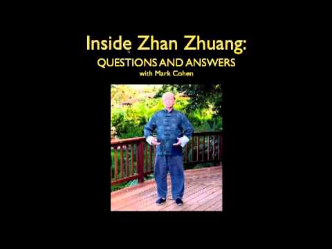 Inside Zhan Zhuang: Questions & Answers with Mark Cohen Part II