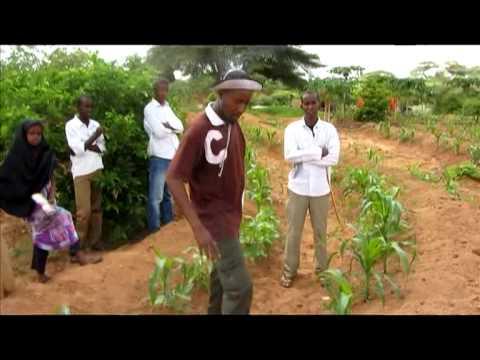 PRI SOMALIA LAND MPEG 4