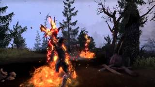 Elder Scrolls Online — Огненный атронах