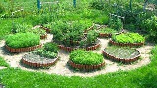 Наши грядки в саду, грядки на огороде.  Красивое оформление градок в саду и огороде