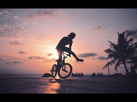 BMX - Freestyle Edition 2014/2015 (3)