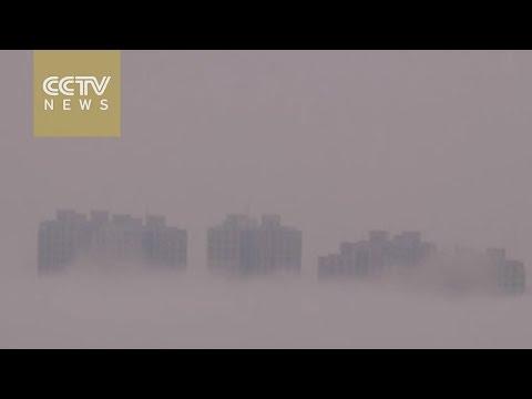 Watch: 'Buildings' emerge above sea