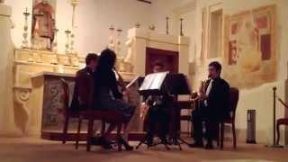 """Concerto for saxophone quartet"", Philip Glass (Eccetera Saxophone Quartet)"