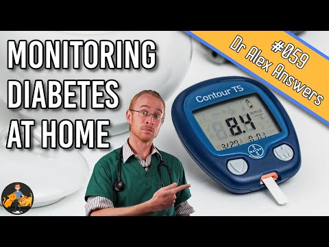 How To Monitor Your Pet's Diabetes At Home (blood Glucose +more!) - Dog + Cat Health Vet Advice
