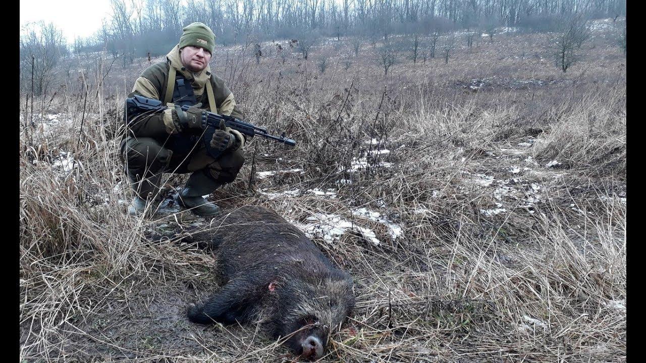 Загонная охота на кабана и косулю / Охота в России / #Охота / #Hunter / #Hunting