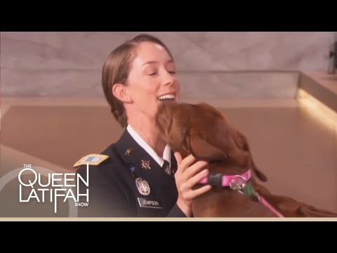Dogs on Deployment Reunites Soldier with Her Dog on The Queen Latifah ...