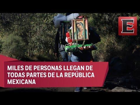 Peregrinos caminan durante días para llegara a la Basílica de Guadalupe