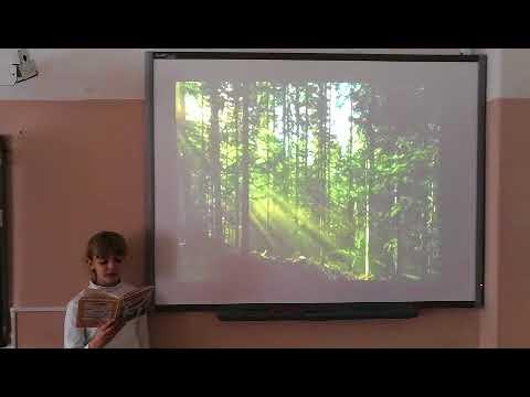 Изображение предпросмотра прочтения – ЮлияДроздюк читает произведение «Шуми, шуми зеленый лес» (Никитин Иван)